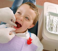 Boy Getting His Teeth Flossed bxp56285h