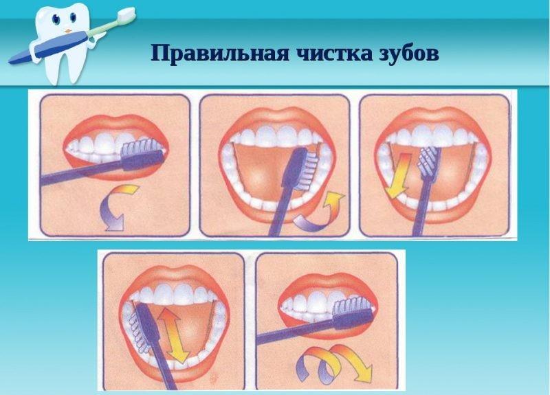 Как правильно чистить зубы видео, девушки трахаются раком фото